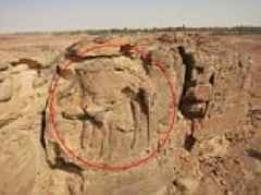 2000-year-old camel relief carvings found in Saudi Arabia