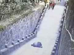 Tourist falls to his death while sitting on a fence in China