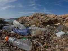 Scientists develop an enzyme that can destroy the most common type of plastic used in water bottles