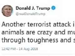 Trump blasts 'another terror attack in London' as he hits out at 'crazy animals'