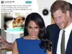 Meghan Markle's half-sister Samantha compares Prince Harry to a hamster on his 34th birthday