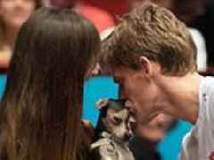 Kevin Anderson kisses his wife and their dog after winning Vienna Open