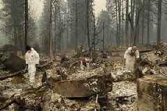 Camp Fire Death Toll Climbs to 48 As Officials Search For Victims In Northern California