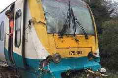 One in five Transport for Wales trains is damaged by leaves on the track and out of service