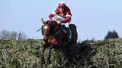 Grand National: 'Impossible' for Tiger Roll to win again in 2019, says Davy Russell