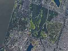 The 'urban forests' of New York revealed: New study finds the city has five MILLION trees