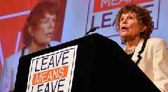 'We didn't spend 30 years stopping IRA to allow PM and EU to give united Ireland by back door' says Labour MP Kate Hoey