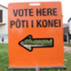 Dave Cull: Moving local voting online will help Govt too