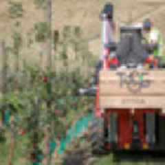 Apple-picking robot could be a game changer for the industry