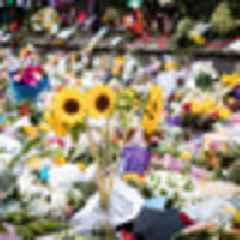 Thirteen Christchurch terror attack victims still in hospital, with one still fighting for life