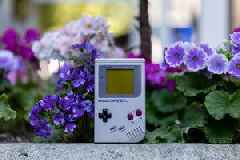 The Game Boy was the first console that felt like it was mine