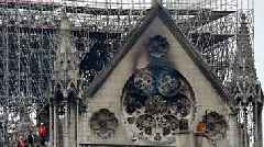 Notre Dame's 180,000 Bees Survive Cathedral Fire