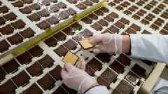 Choco Leibniz biscuit heiress sparks row over Nazi-era labour