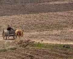North Korea seeing worst drought in a century: state media