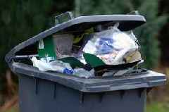 Petition launched against proposals to increase bin collections to three weeks