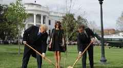 Tree Planted By Trump And Macron Reportedly Died In Quarantine