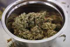 Cannabis producer Canopy Growth slips after a disappointing earnings report (CGC)