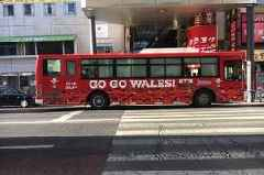 People in Japan are already going crazy for Wales and it might just make the difference at the Rugby World Cup