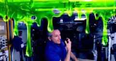 Astronauts on the ISS Are About to Get Slimed — for Science