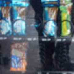 Raccoon found among snacks in high school vending machine