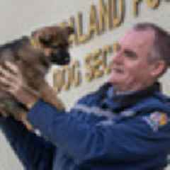 Fiercest of the fierce: What happens to failed New Zealand Police dogs?