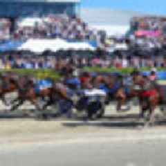 Racing: Blair Orange cruises to New Zealand Cup victory