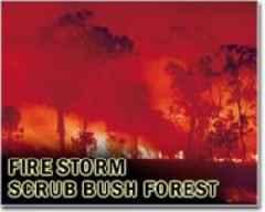 Bushfire threat still high as Australia clean up begins