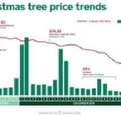 Square and The National Christmas Tree Association Unveil Christmas Tree Calculator That Predicts The Best Day For Consumers To Buy Their Trees