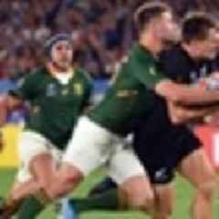 Rugby: Springboks urged to clean sweep All Blacks to prove their world champion credentials
