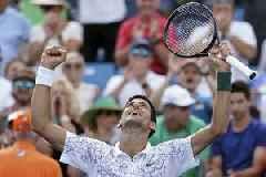Australian Open: Novak Djokovic sets up semi-final clash with Roger Federer after major win