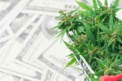 2 Cash-Rich Cannabis Stocks That Can Withstand a Global Recession