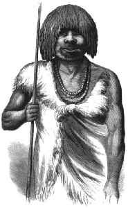 Aboriginal Tasmanians: Indigenous people of the Australian island state of Tasmania