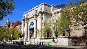 American Museum of Natural History: Natural history museum in New York City
