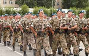 Army: Military branch for ground warfare