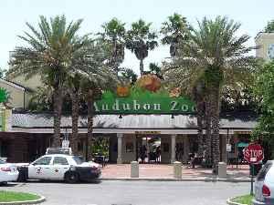 Audubon Zoo: