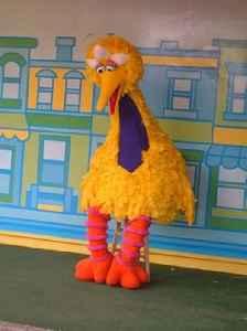 Big Bird: Sesame Street character