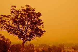 Bushfires in Australia: Frequently occurring wildfire events