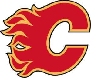 Calgary Flames: Hockey team of the National Hockey League