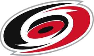 Carolina Hurricanes: American professional ice hockey team