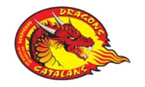 Catalans Dragons: French rugby league football club