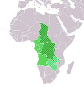 Central Africa: Core region of the African continent