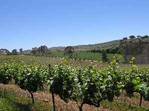 Clare Valley: Region in South Australia