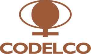 Codelco: Company