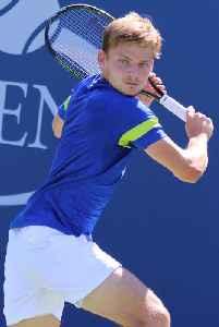 David Goffin: Belgian tennis player