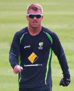 David Warner (cricketer): Australian international cricketer