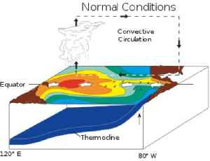 El Niño: Warm phase of a cyclic climatic phenomenon in the Pacific Ocean
