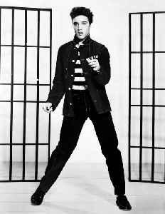 Elvis Presley: American singer and actor