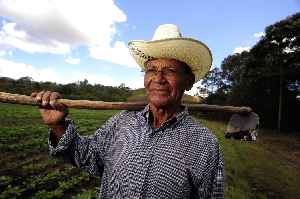 Farmer: Person that undertakes agriculture