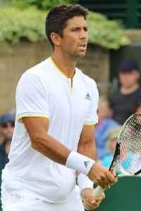 Fernando Verdasco: Spanish tennis player