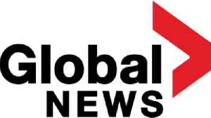 Global News: Canadian news network, division of Global Television Network